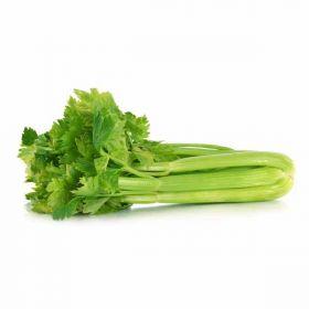 Celery Local