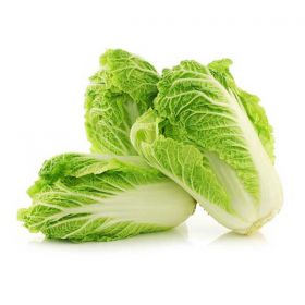 Chinese Cabbage - KG
