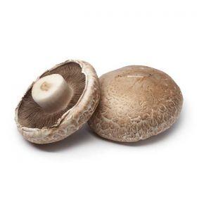 Mushrooms - Portobello (PC)